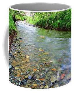 Creek Of Many Colors Coffee Mug by Donna Blackhall