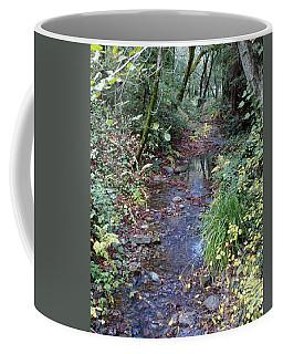 Creek On Mt Tamalpais 2 Coffee Mug
