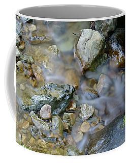 Creek On Mt Tamalpais Coffee Mug