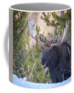 Creekside  Coffee Mug
