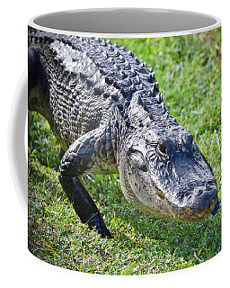 Creeping Along Coffee Mug by Judy Kay