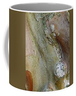 Crepe Myrtle Bark Abstract Coffee Mug