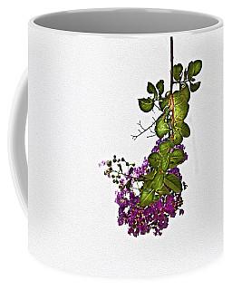 Crepe Myrtle In Oil Coffee Mug