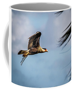 Crested Caracara Coffee Mug
