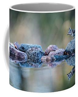 Crested Tit's Reflection Coffee Mug