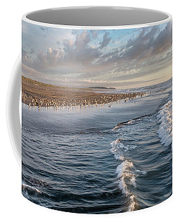 Coffee Mug featuring the photograph Crests And Birds by Greg Nyquist