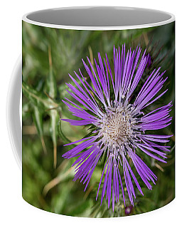 Cretan Thistle Coffee Mug