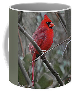 Crimson Cardinal Coffee Mug