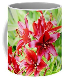 Crimson Lilies Coffee Mug