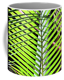 Coffee Mug featuring the photograph Crisscrossing Palms by Rosanne Licciardi