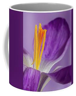 Crocus Stamens  Coffee Mug