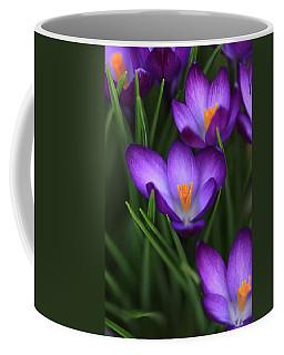 Crocus Vividus Coffee Mug