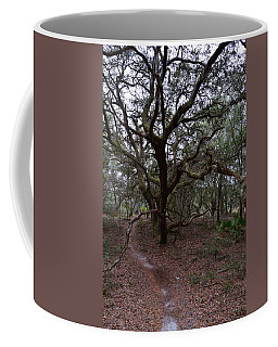 Crooked Limbs And Trail Portrait Coffee Mug by Warren Thompson