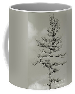 Crooked Tree Coffee Mug