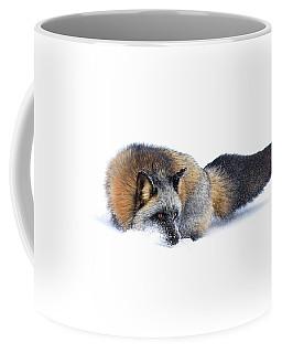 Cross Fox Coffee Mug by Steve McKinzie
