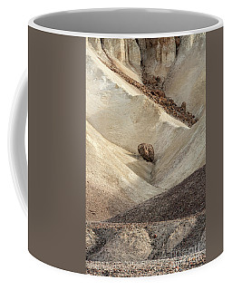 Coffee Mug featuring the photograph Crossing Paths - Death Valley by Sandra Bronstein