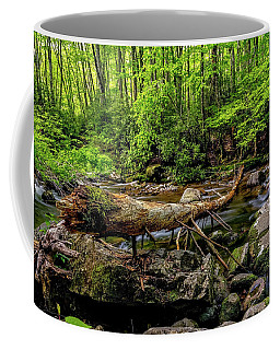 Coffee Mug featuring the photograph Crossing The Stream by Christopher Holmes
