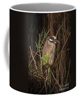 Crouching Yellow Crest Coffee Mug