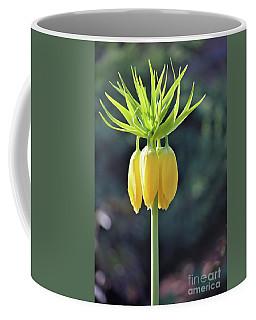 Crown Lily Coffee Mug