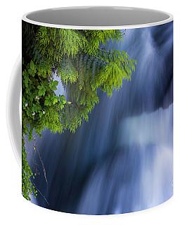 Crystal Creek Waterfalls Coffee Mug