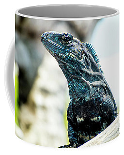 Ctenosaura Coffee Mug