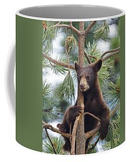 Cub In Tree Dry Brushed Coffee Mug