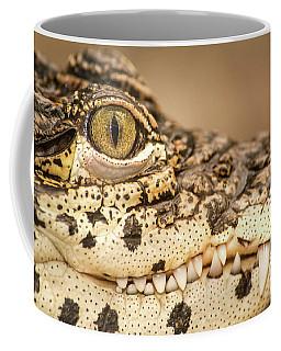 Cuban Croc Smile Coffee Mug
