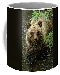 Cubby Coffee Mug