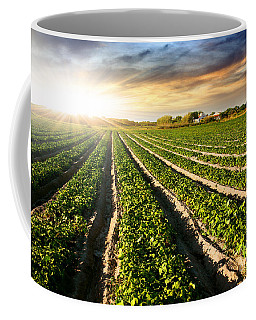 Rural Landscape Coffee Mugs