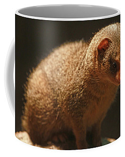 Coffee Mug featuring the photograph Curiosity At Rest by Laddie Halupa