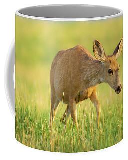 Coffee Mug featuring the photograph Curiosity by John De Bord