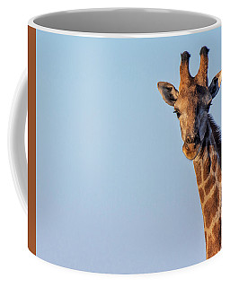 Curious 1 Coffee Mug