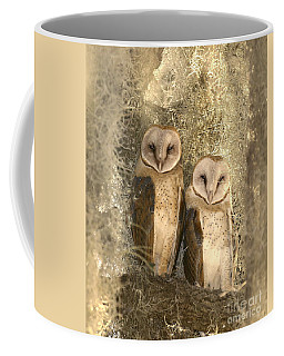 Curious Barn Owls Perched Coffee Mug