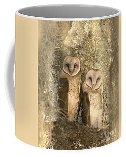 Curious Barn Owls Perched Coffee Mug