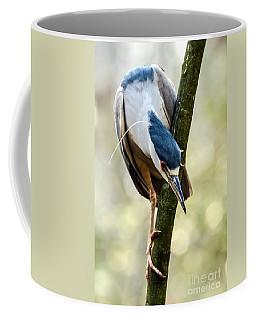 Curious Black Crown Night Heron Coffee Mug by Debbie Green