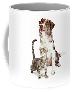 Curious Cat And Dog Looking Up Coffee Mug