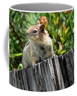 Curious Chipmunk Coffee Mug by AJ Schibig