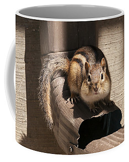 Curious Chipmunk Coffee Mug