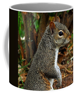 Curious Coffee Mug