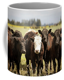Coffee Mug featuring the photograph Curious Cows by Rebecca Cozart