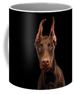 Coffee Mug featuring the photograph Curious Doberman by Sergey Taran