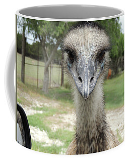 Curious Emu At Fossil Rim Coffee Mug