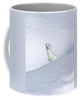 Curious Ermin Coffee Mug