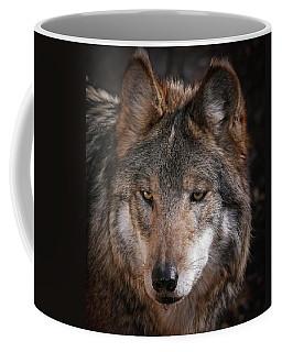 Curious Sancho Coffee Mug