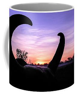 Curious Sunrise Coffee Mug