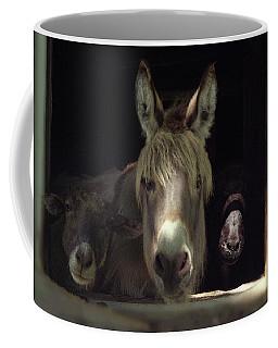 Coffee Mug featuring the photograph Curious Trio by Wayne King