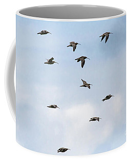 Coffee Mug featuring the photograph Curlews In Flight 01 by Brian Roscorla