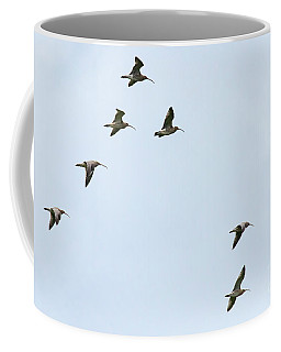 Coffee Mug featuring the photograph Curlews In Flight 06 by Brian Roscorla