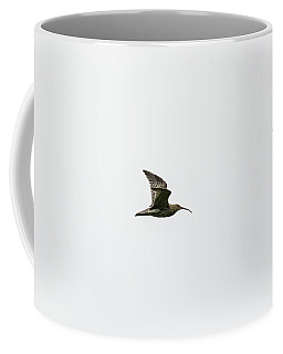 Coffee Mug featuring the photograph Curlews In Flight by Brian Roscorla