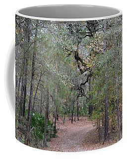 Curve To The Right - Forest Road Coffee Mug
